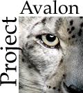 Projeto Avalon O Projeto Avalon, originalmente estabelecido por Bill Ryan e Kerry Cassidy do Projeto Camelot em agosto de 2008, está agora sendo relançado como um portal de informação de alta qualidade e inspiração. Ele seguirá uma missão muito parecida com a do