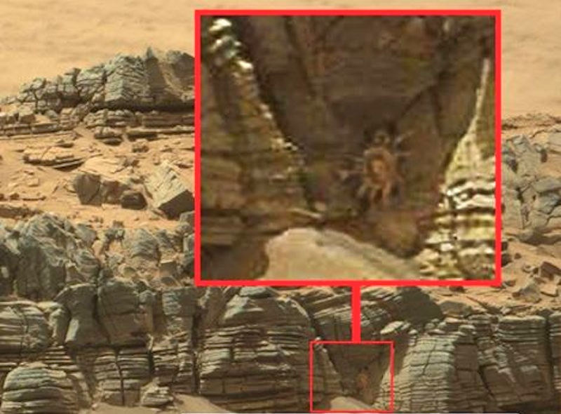 How Your Brain Tricks You Into Seeing Crabs On Mars
