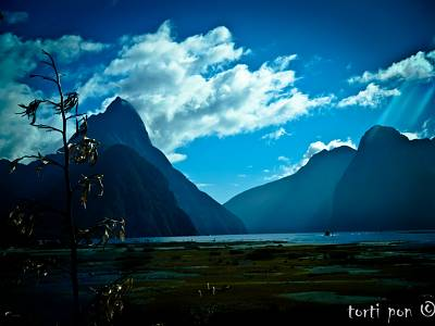 Click image for larger version  Name:Milford Sound 1 300dpi.jpg Views:93 Size:180.2 KB ID:20790