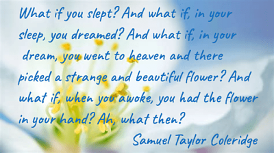 Click image for larger version  Name:What if you slept.png Views:34 Size:88.3 KB ID:41680