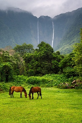 Click image for larger version  Name:Waipio Valley.jpg Views:33 Size:155.2 KB ID:40991
