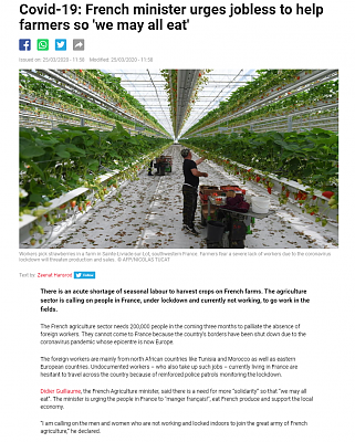Click image for larger version  Name:French minister urges jobless to help farmers so we may all eat - 2020-03-26 A.png Views:47 Size:793.7 KB ID:42933