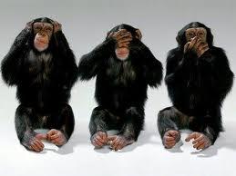 Name:  Monkey See.jpg Views: 620 Size:  7.1 KB