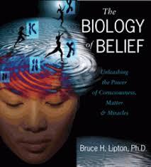 Name:  Biology of Belief.jpg Views: 19976 Size:  8.3 KB