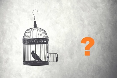 Click image for larger version  Name:bird_in_a_cage_v2.jpg Views:1 Size:47.8 KB ID:41918