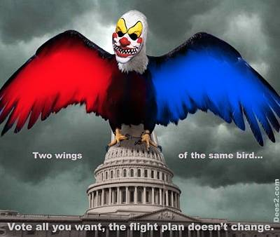 Click image for larger version  Name:right_wing_left_wing_same_bird.jpg Views:89 Size:33.6 KB ID:14337