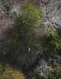 Name:  farmsedge3 01.06.19.PNG Views: 220 Size:  27.4 KB