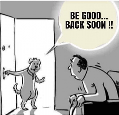 Click image for larger version  Name:42 ~ be good back soon bnw cartoon of dog leaving man at home (3-24-20) (21).jpg Views:5 Size:36.9 KB ID:46536