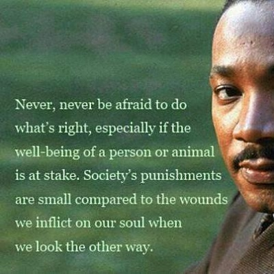 Click image for larger version  Name:never never be afraid to do what is right (6-11-12) ~ 16 (2).jpg Views:3 Size:27.8 KB ID:46567