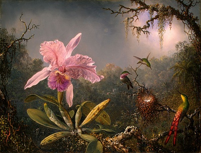 Click image for larger version  Name:Martin_Johnson_Heade-Cattleya_Orchid_and_Three_Brazilian_Hummingbirds.jpg Views:138 Size:231.0 KB ID:41712