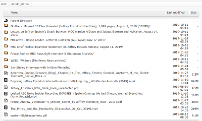 Click image for larger version  Name:Epstein_library.PNG Views:18 Size:72.8 KB ID:41919