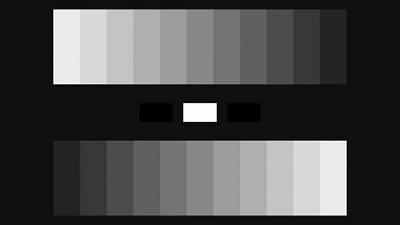 Click image for larger version  Name:8bit_full_greyscale_12.jpg Views:227 Size:8.4 KB ID:8288