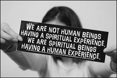 Click image for larger version  Name:human experience&#4.jpg Views:158 Size:34.3 KB ID:8286